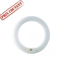 Ampoule Master TL-E Circular 40W - G10q