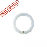 Ampoule Master TL-E Circular 32W - G10q
