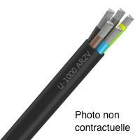 Câble aluminium AR2V 2x35 au mètre