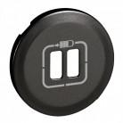 Enjoliveur double prise chargeur USB - Graphite