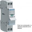 Interrupteur sectionneur avec lampe témoin 16A