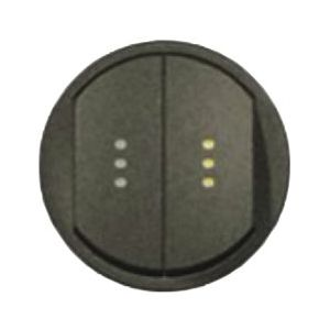 Enjoliveur double interrupteur à voyant - Graphite