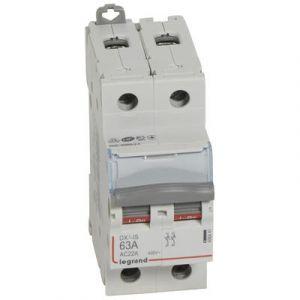 Interrupteur sectionneur bipolaire 63A - Legrand - 406441