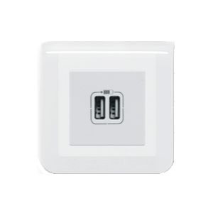 Prise double USB A à griffe - Mosaic